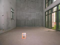 金地湖山大境 5室2厅1厨4卫 238.59m² 精致装修二手房效果图